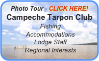 Photo Tour - CLICK HERE! Campeche Tarpon Club  Fishing  Accommodations  Lodge Staff  Regional Interests