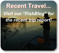 "Recent Travel...  Visit our ""FishBlog"" for the recent trip report!"