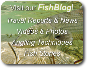 Visit our FishBlog!  Travel Reports & News Videos & Photos Angling Techniques Fish Stories