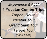 Experience it ALL!